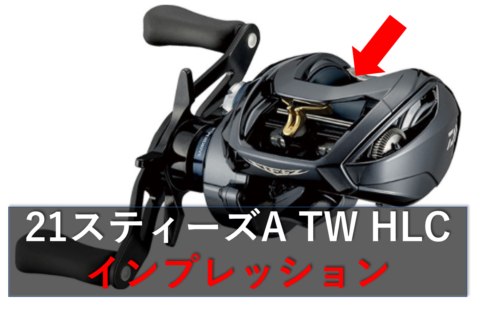 Hlc tw スティーズ a
